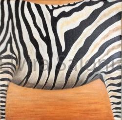 """""""Il segreto delle zebre"""" – acrilico – cm 40x40 - Elvira Salonia"""