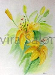 Lilium gialli cm23x30